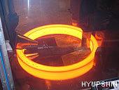 Jinan Hyupshin Flanges Co., Ltd, Forged Flanges, Steel Flanges, Manufacturer, Exporter from Shandong of China, flanges foring and rolling