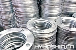 Backing Ring Flanges Hot Galvanize Jinan HyupShin Flanges Co., Ltd