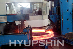 Jinan HyupShin Flanges Co., Ltd Forging and Rolling Flanges
